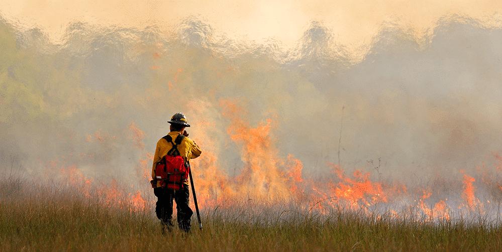 消防員在野地火災中的安全